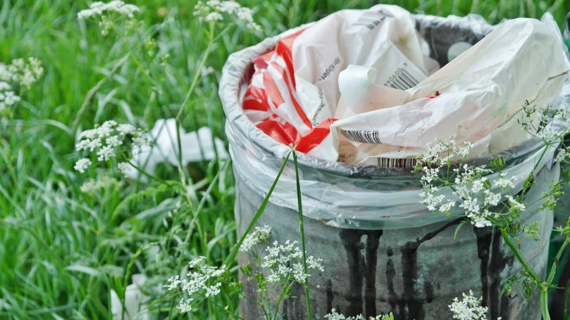 Zebrane zmieszane i selektywne odpady komunalne