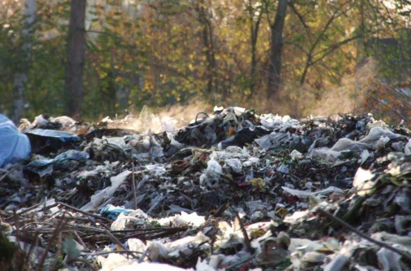 Kary za przestępstwa przeciwko środowisku, czekają nas zmiany